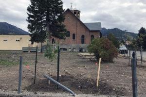 3 Fall Shrub Planting Sept 28, 2018 IMG_2204