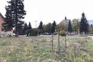 4 Fall Shrub Planting Sept28, 2018 IMG_2206