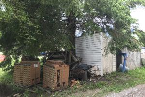 4 Fernie Family Community Garden Site June-01-17 IMG_7033
