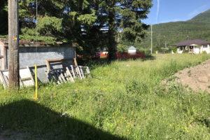 6 Fernie Family Community Garden Site June 30-17 IMG_7464