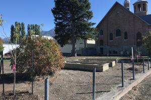 7 Fall Shrub Planting October 11, 2018 IMG_2280 (1)